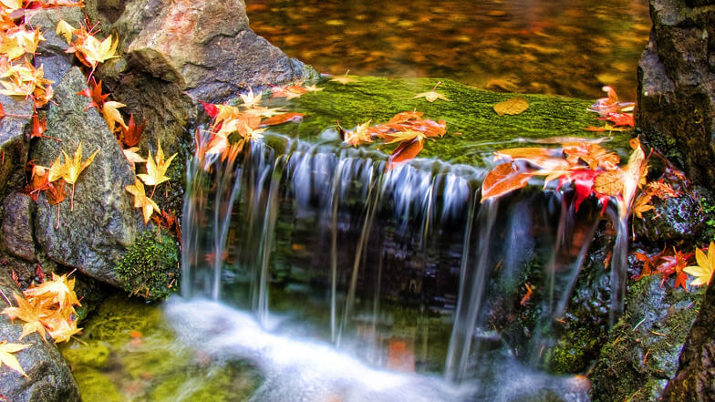 Beautiful water flowing over colourful stones, moss and leaves